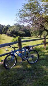convent bike